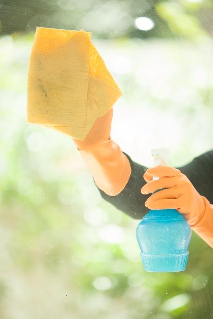【夏の虫対策!】車のフロントガラス・ボディの虫汚れの除去方法から事前対策まで