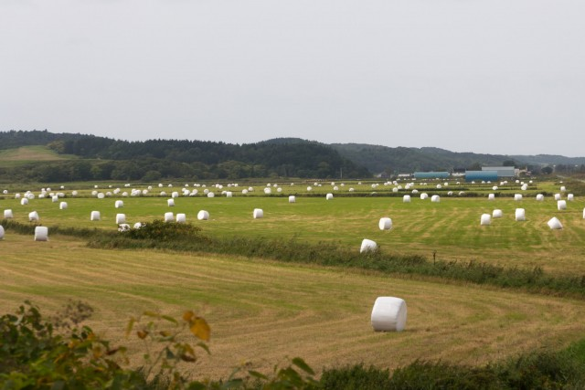 北海道のキャンピングカーで行けるおすすめキャンプ場10選